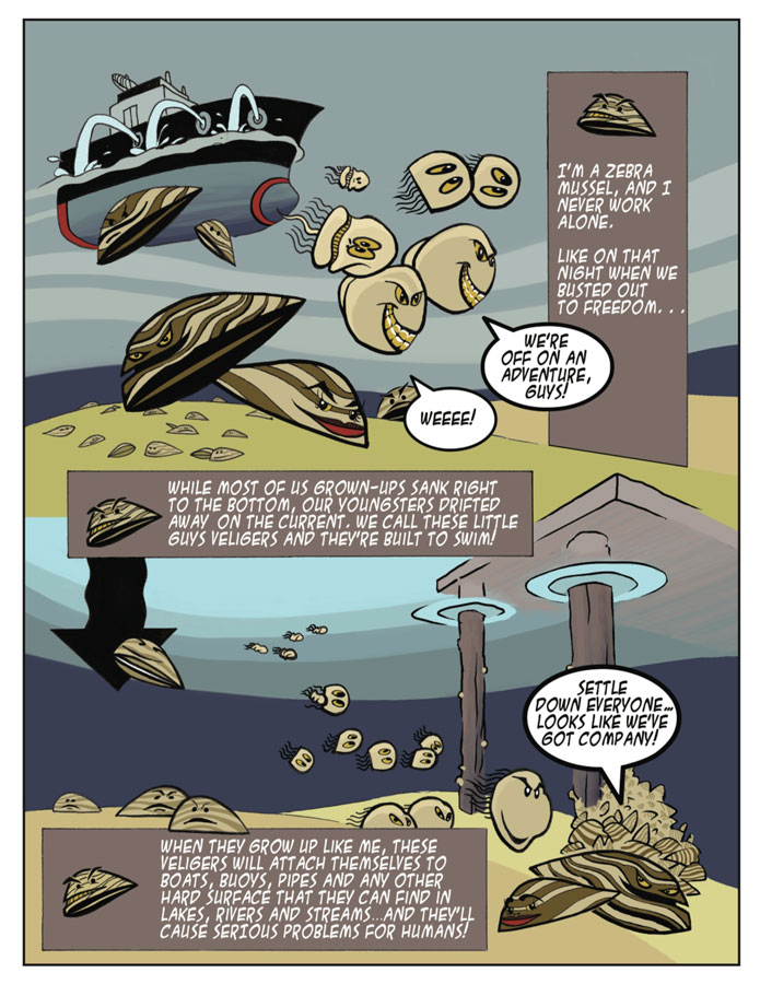 Invasive Species Awareness - Zebra Mussel Cartoon