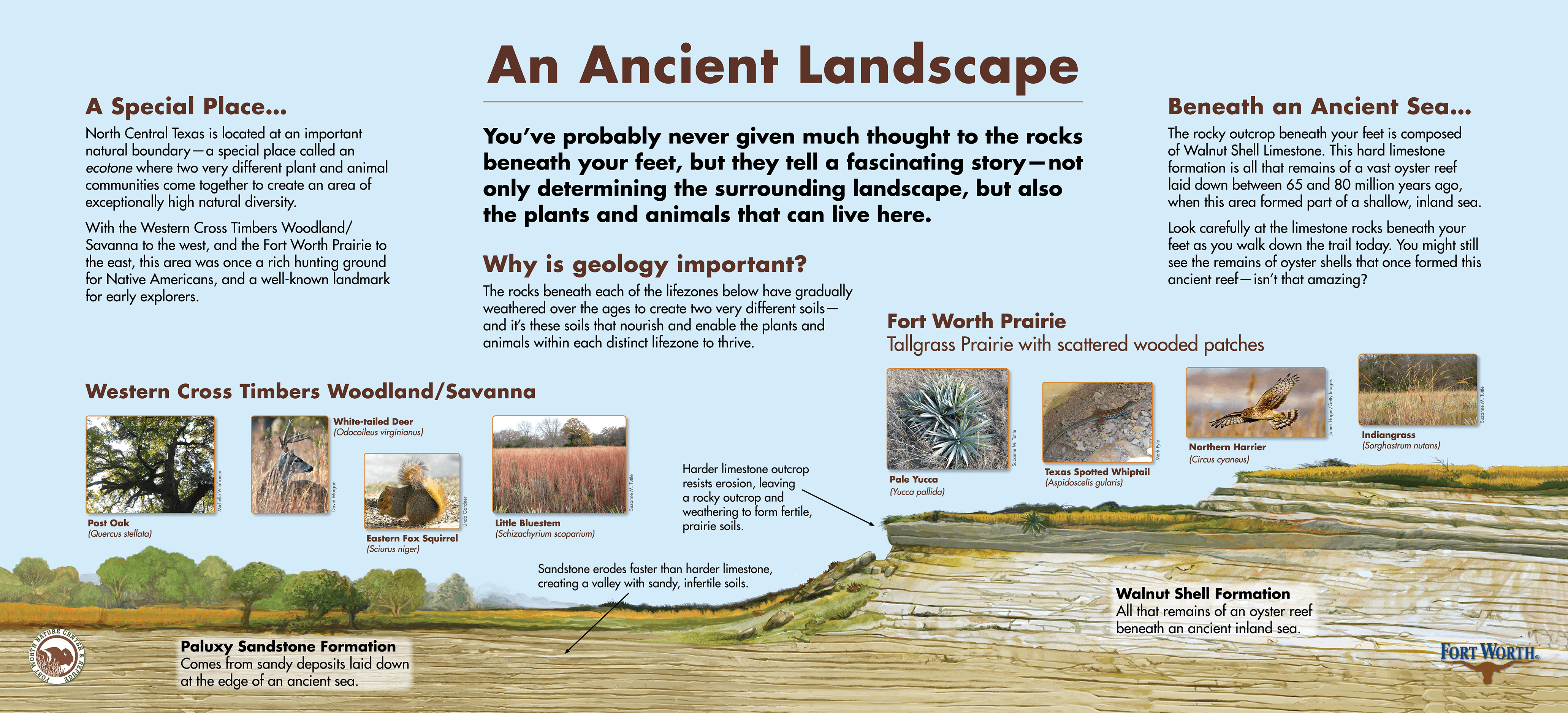 fwnc_geology
