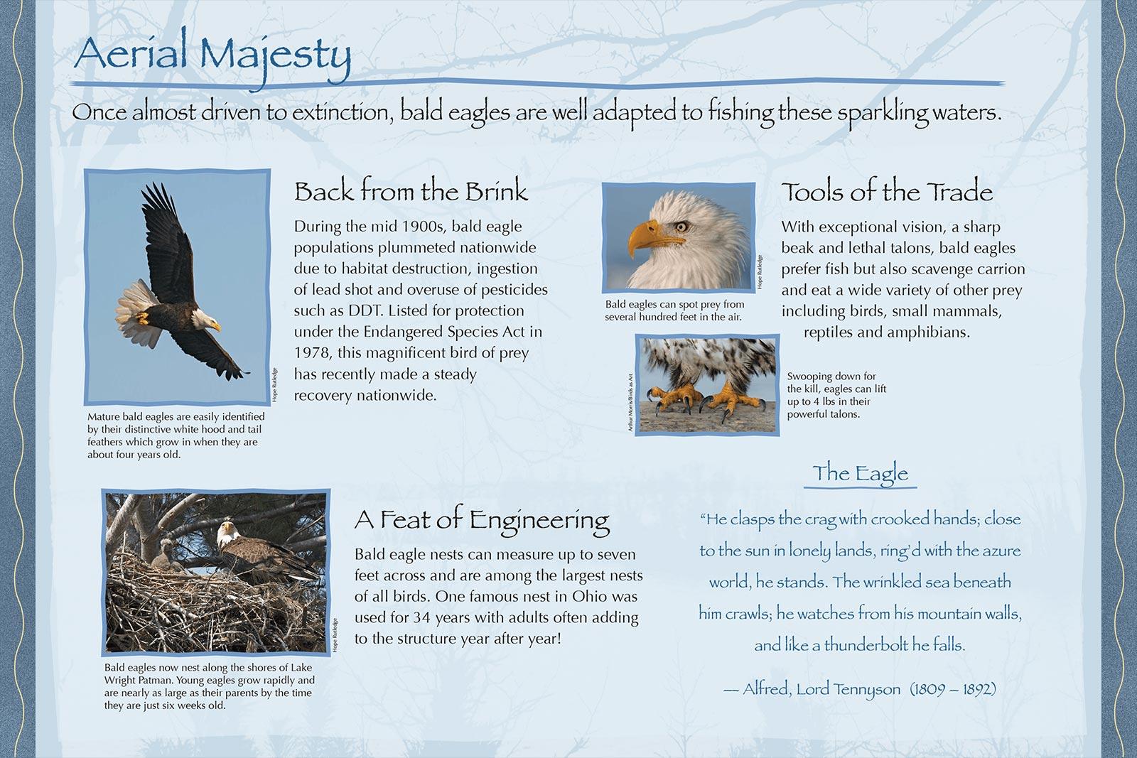 Atlanta State Park Birds Panel